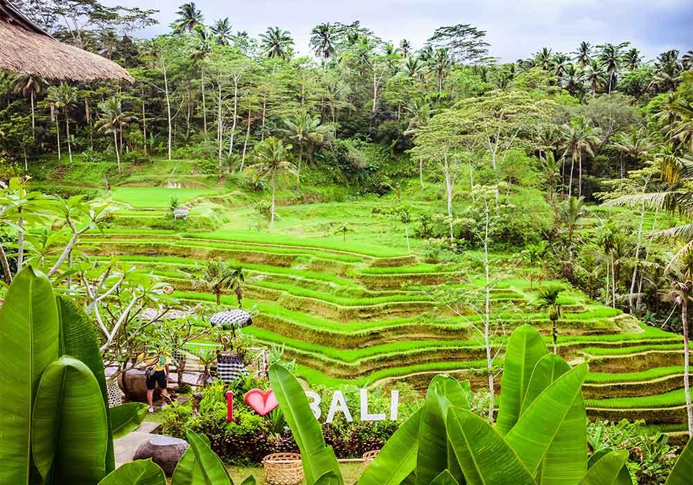 bali-itinerario-ubud