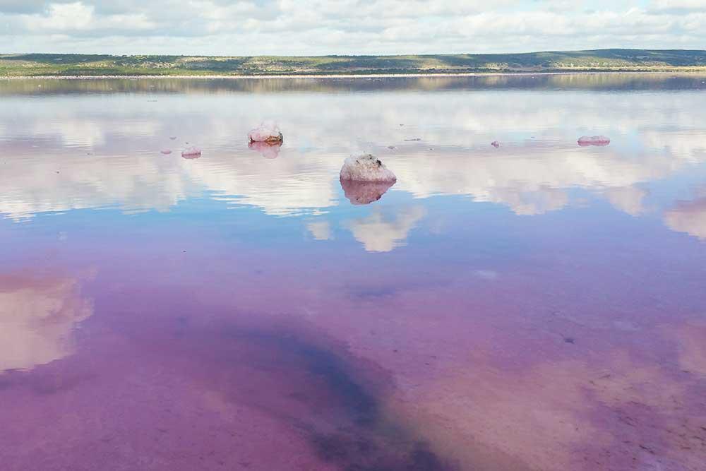 laghi-rosa-in-australia