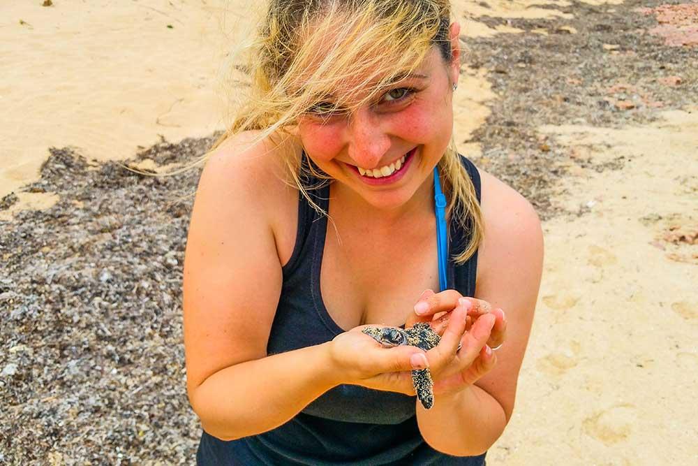 tartarughe-marine-australia