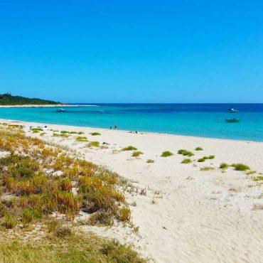 Margaret River Australia – Natura e gusto