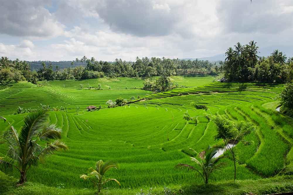 Visto per Bali