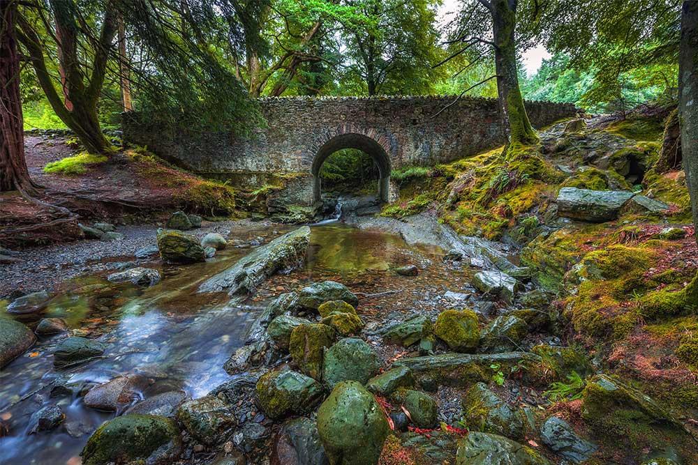 Luoghi-del-Trono-di-Spade-tollymore-forest-park
