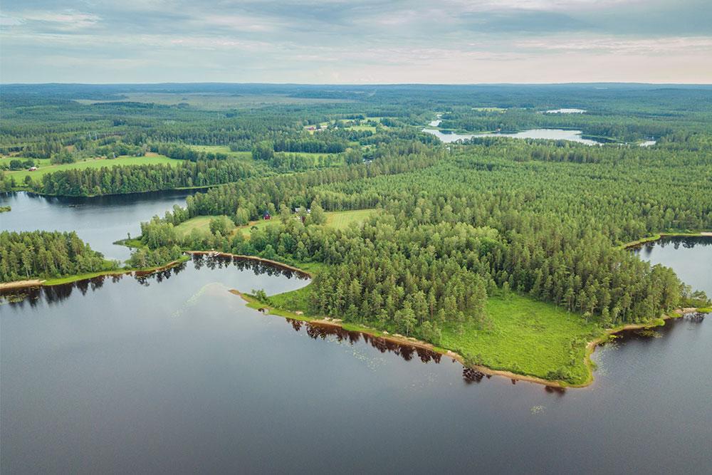 campeggio libero in Svezia