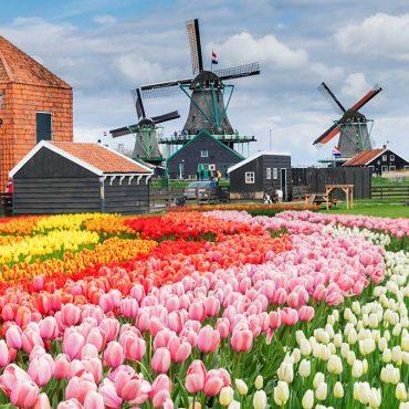 Amsterdam cosa vedere in 4 giorni – Quello che devi sapere per vivere al meglio la città!