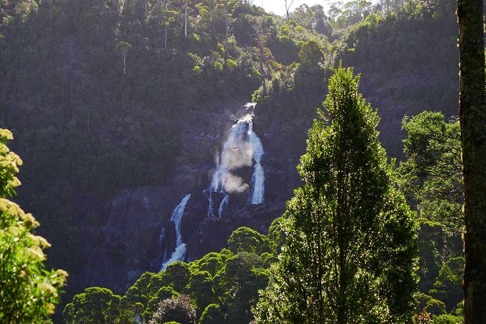 Tasmania-in-3-giorni-saint-columba-falls-cascata