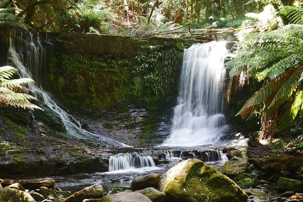 Tasmania in 3 giorni baron falls cascate