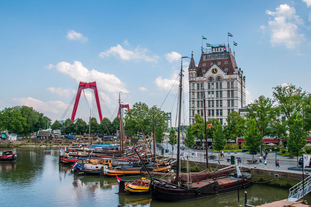 Rotterdam-cosa-vedere-casa-bianca-