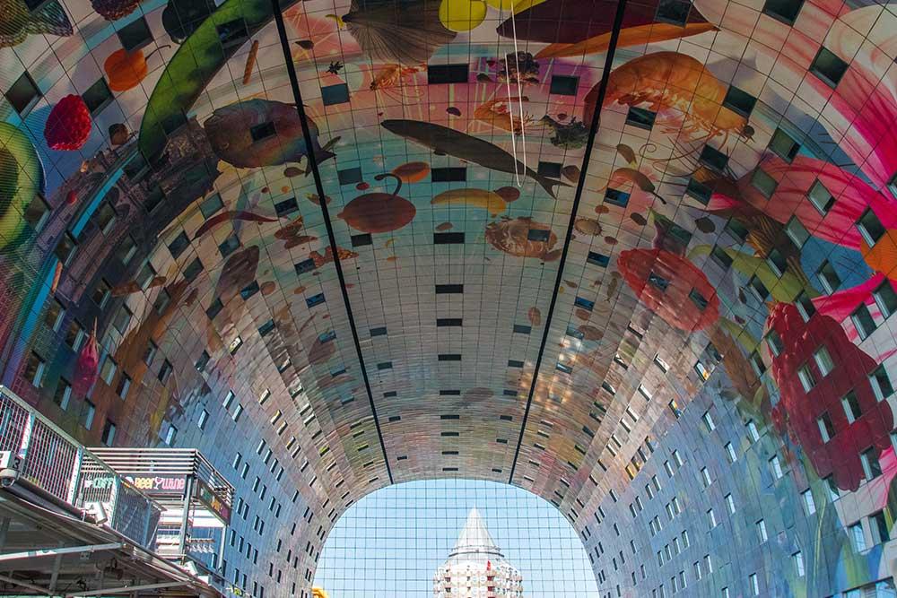 Rotterdam-cosa-vedere