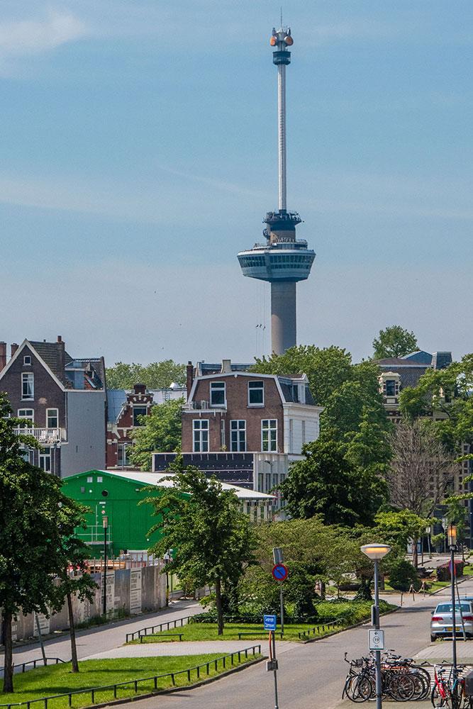 Rotterdam-cosa-vedere-euromast