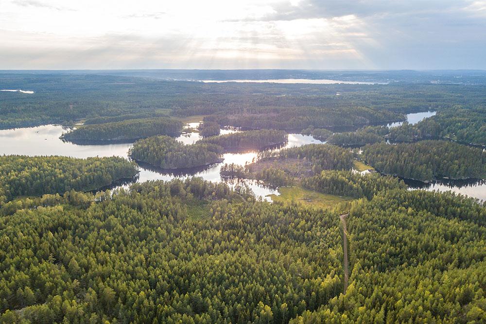 Dove-campeggiare-in-Svezia-natura