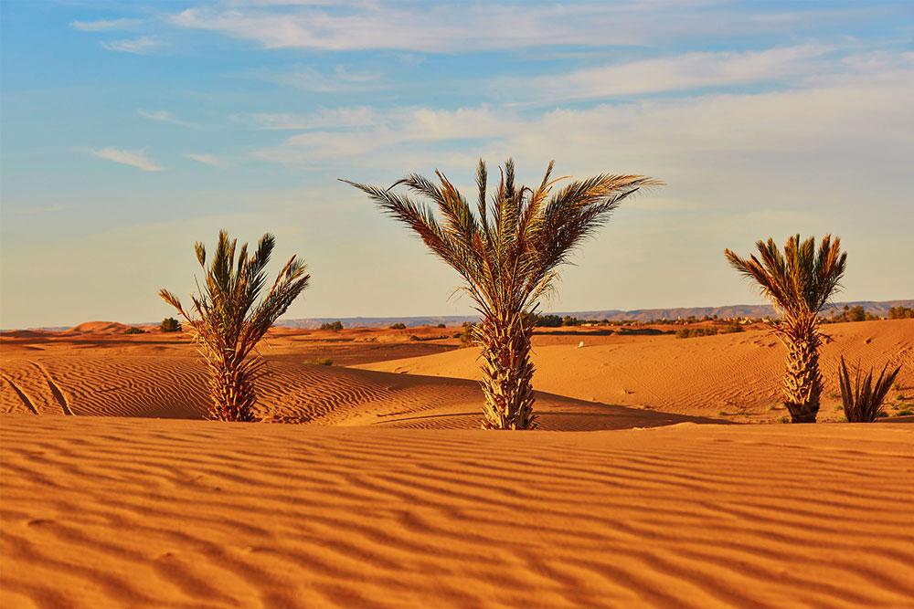tour-Marocco-7-giorni-merzouga-deserto