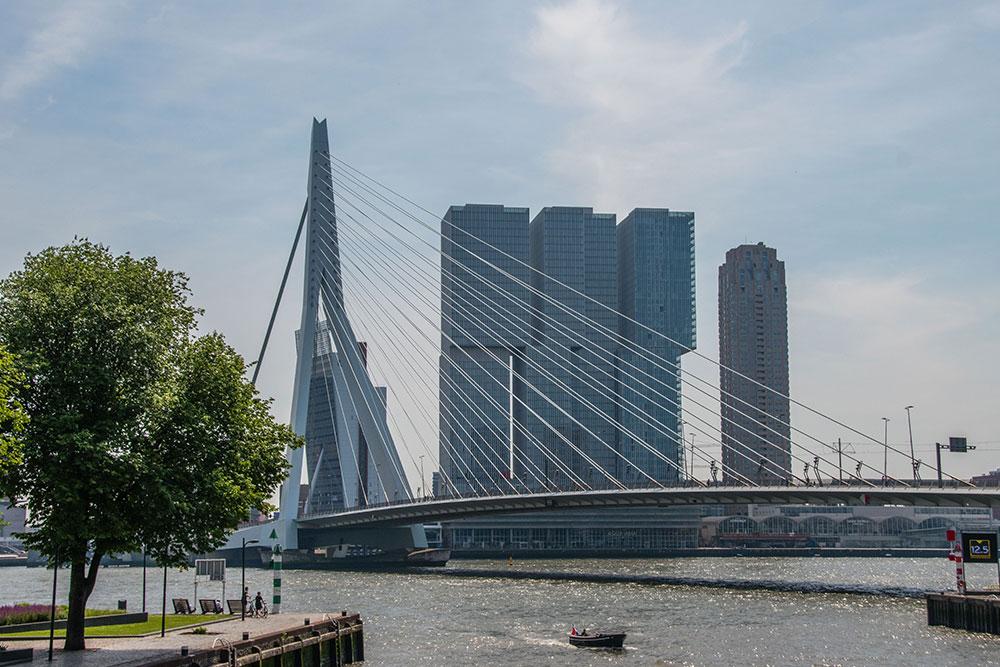 miglior periodo per andare a Rotterdam