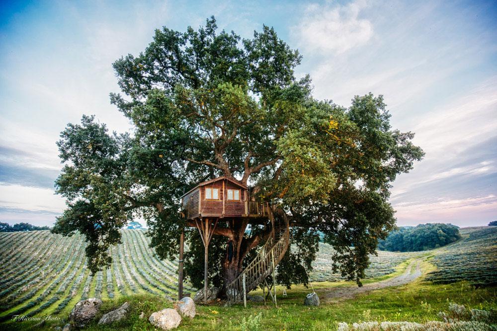 casa-sull-albero-agriturismo-la-piantata
