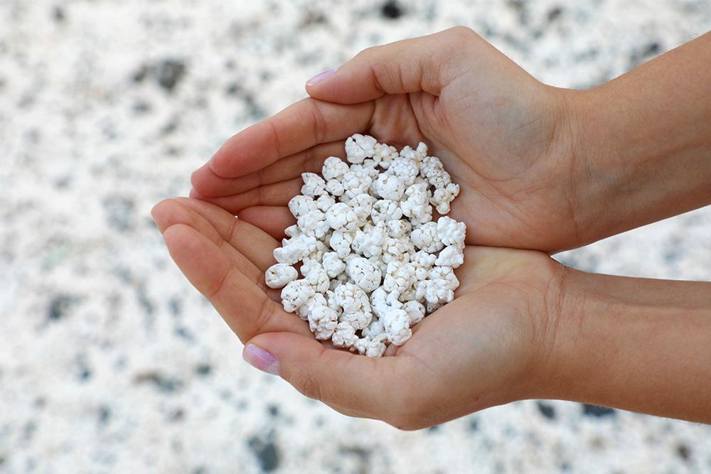 spiagge-nel-mondo-popcorn-beach-fuerteventura