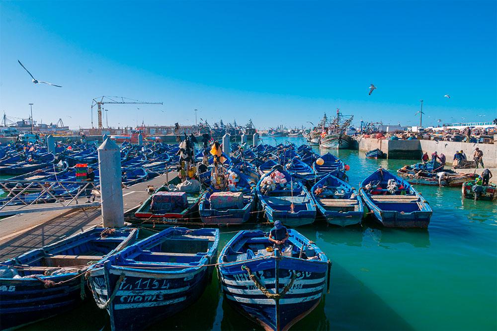 Cosa-vedere-a-Essaouira-porto-barche-blu