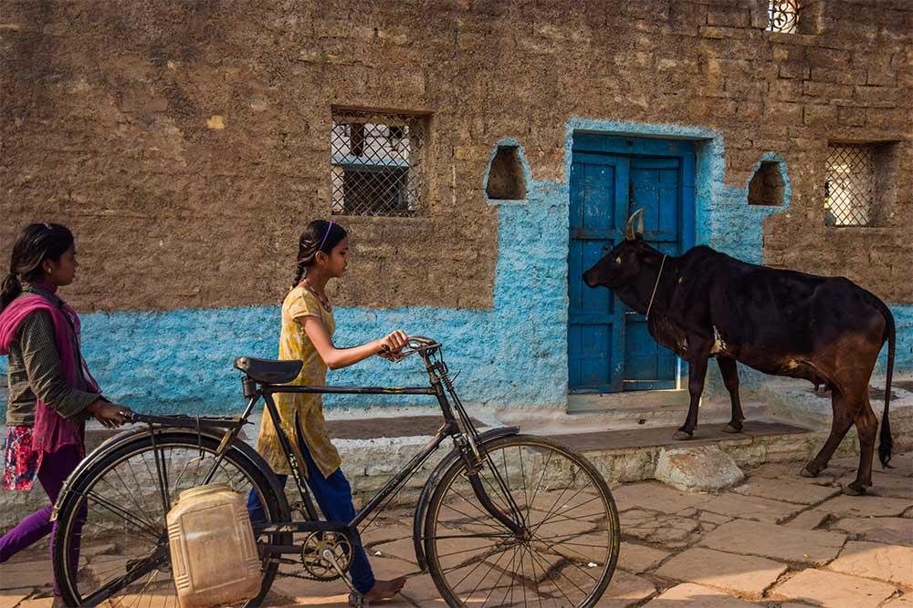 India-mucca-ragazze-in-bici